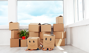 sunlight removals home removals service 1