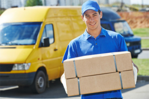 sunlight removals man and van service